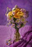 Buntes Chrysanthemebündel Stockbild