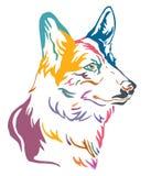 Buntes dekoratives Porträt der Hunde-Waliser-Corgivektorillustration lizenzfreie abbildung