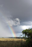 Buntes Ende zum Regen Stockfotografie