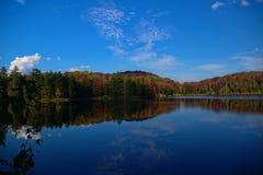 Buntes Fall-Blatt-Laub auf einem Seeuferrückzug in den Adirondack-Bergen Vibrierende rote, gelbe und orange Farben des Herbstes Stockfotografie