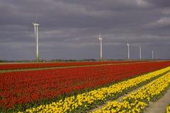 Buntes Feld und windturbine Stockfoto