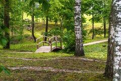 Buntes Foto des Parks an einem Sunny Autumn-Tag - Holzbrücke mitten in ihm stockbild
