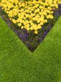 Buntes Garten-Blumenbeet Stockbild