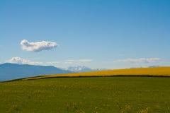 Buntes gebogenes Feld mit blauem Himmel und Wolken im Frühjahr Lizenzfreies Stockfoto