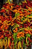 Buntes Gemüse Stockbild
