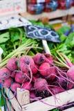 Buntes Gemüse im Markt Lizenzfreie Stockbilder
