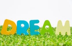 Buntes hölzernes Wort TRAUM auf grünem Gras mit weißem Hintergrund und selektivem Fokus Lizenzfreies Stockfoto