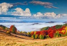 Buntes Herbstpanorama in den Karpatenbergen Sokilsky r lizenzfreies stockfoto