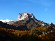 Buntes Holz und Berg Thabor Frankreich Europa Stockbild