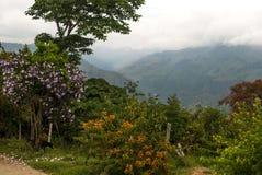 Buntes Kolumbien Lizenzfreie Stockfotos