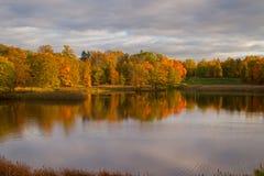 Buntes Laub des Herbstes über See mit schönem Holz Lizenzfreie Stockfotos