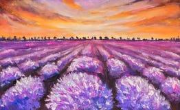 Buntes Lavendelfeld an der Sonnenuntergangmalerei lizenzfreie abbildung