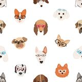 Buntes nahtloses Muster mit Gesichtern von den Hunden, die Gläser oder Sonnenbrille auf weißem Hintergrund tragen Hintergrund mit lizenzfreie abbildung