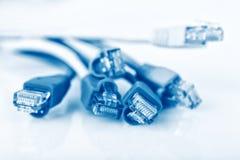 Buntes Netzkabel mit Verbindungsstücken RJ45, blaues Netzkabel lizenzfreies stockbild