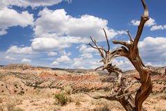 Buntes New Mexiko Stockfotos