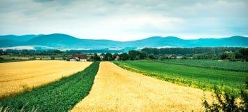 Buntes Panorama des Feldes mit Landschaft und der Berge auf dem Hintergrund Stockfoto