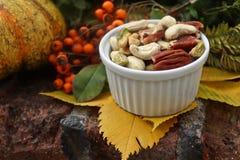 Buntes Stillleben des Herbstes mit Blättern und Nüssen lizenzfreie stockfotos