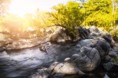 Buntes Wasserfallgelb hell im Nationalpark Stockbilder
