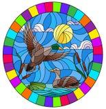 Buntglasillustration mit Enten auf einem Teich in den Schilfen gegen den bewölkten Himmel und die Sonne, ovales Bild im hellen Ra lizenzfreie abbildung
