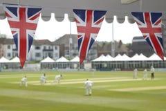 Bunting and cricket Royalty Free Stock Photos