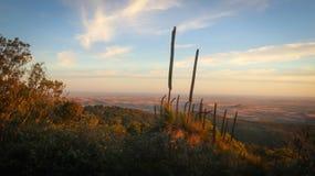 Bunya Mountains Landscape at Sunset Stock Photos