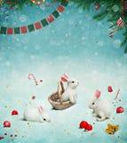 Buon anno della cartolina d'auguri! Fotografie Stock