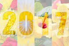 Buon anno 2017 nel tema del fiore Immagine Stock Libera da Diritti