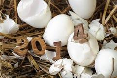 Buon anno 2014 su un nido di fieno Immagine Stock
