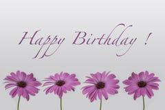 Buon compleanno - fiori su bianco illustrazione di stock