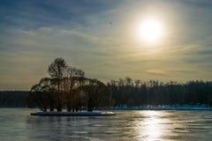 Buon giorno di inverno soleggiato nel parco ad uno stagno Fotografia Stock