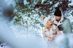 Buon giorno felice di spesa delle coppie all'aperto nell'inverno nevoso fotografie stock libere da diritti