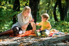 Buon giorno per il picnic della molla in natura Esplori insieme la natura Ragazzo del bambino e della mamma che si rilassa mentre immagini stock