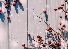 Buon Natale! Cartolina di Natale con le bacche di cratego Immagini Stock Libere da Diritti