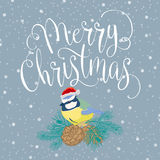 Buon Natale con l'uccello Fotografia Stock Libera da Diritti