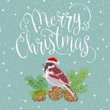 Buon Natale con l'uccello Fotografie Stock Libere da Diritti
