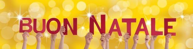 Buon Natale on Festive Background Royalty Free Stock Image