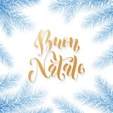 Buon Natale Italian Merry Christmas holiday golden hand drawn calligraphy text for greeting card of Christmas fir garland frame de. Coration. Vector golden font Royalty Free Stock Images
