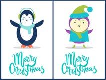 Buon Natale pinguino, illustrazione di vettore dell'uccello Immagini Stock