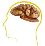 Buona salute del cervello della noce Fotografia Stock Libera da Diritti