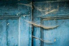 Buonconvento Siena, Tuscany: Höstlig trekk Arkivbild