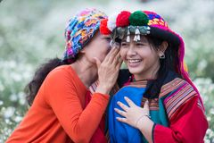 Buone notizie di sussurro di sorriso della tribù felice della collina Immagini Stock Libere da Diritti