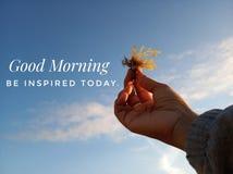 Buongiorno ispiratore di citazione di mattina Sia ispirato oggi Con l'immagine confusa delle mani della giovane donna che tengono fotografia stock