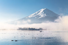 Buongiorno Mt fuji Immagini Stock