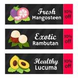 Buoni con i offs per i frutti esotici, mangostano, lucuma, vendita del rambutan illustrazione vettoriale