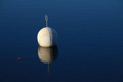 Buoy in calm water royalty free stock photography