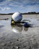 Buoy en la marea baja con las algas verdes, costa costa en Lilia, Bretaña, Imagenes de archivo