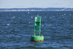 Buoy. A buoy floats in Boston's inner harbor Stock Images