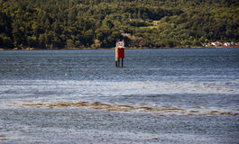 Buoy look like robot. In lake in scottish Highlands stock image