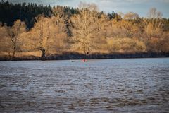 Buoy on a navigable river, warning of danger to ships stock image