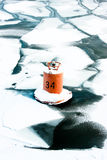 Buoy on the river Royalty Free Stock Photography
